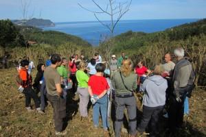 Voluntariado Ambiental - Lurgaia