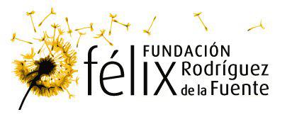 fundacion-FRF