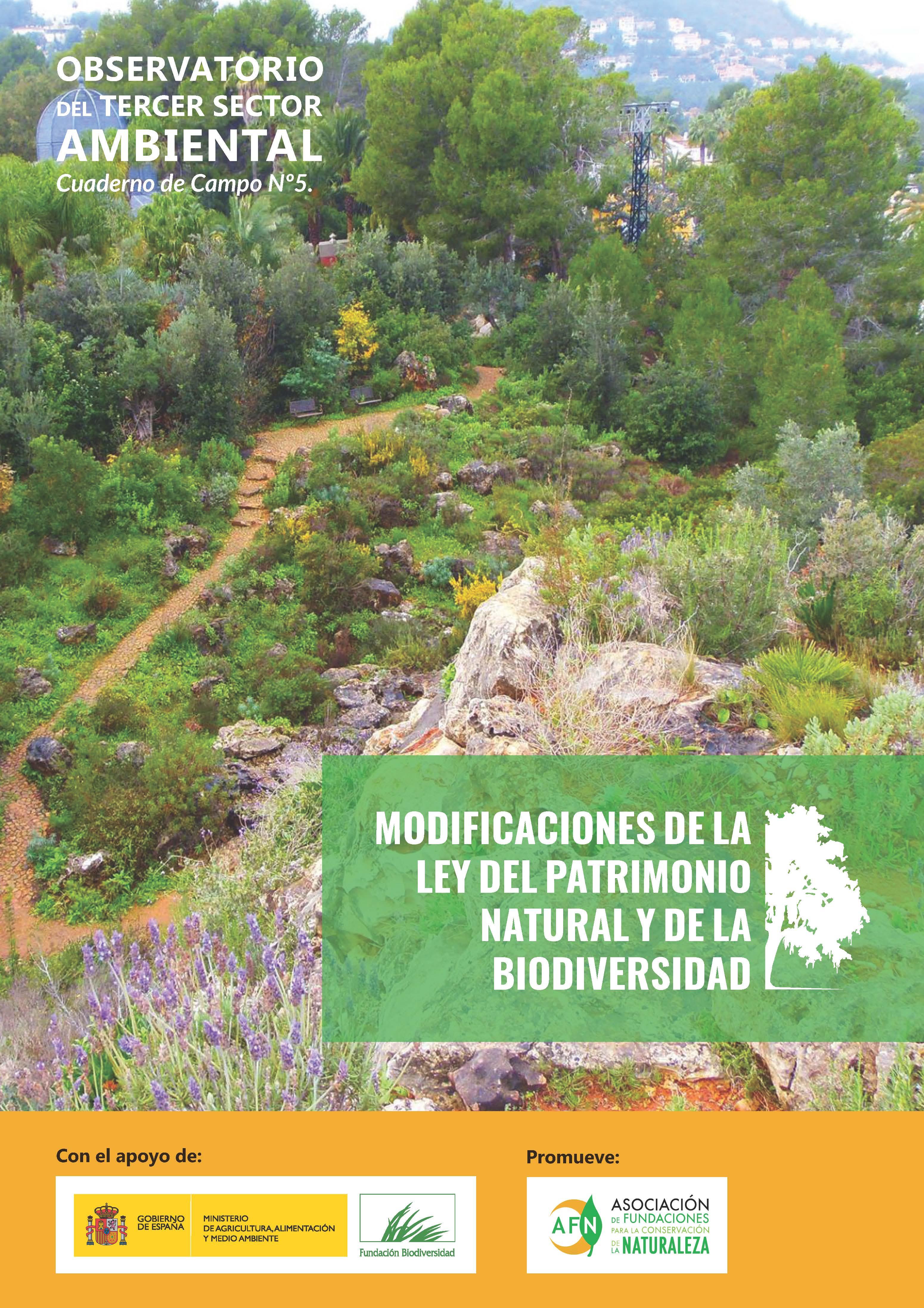 5º Informe_Tercer_Sector_Ambiental
