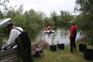 Varios voluntarios trabajan en la restauración de un río. Foto:  Fundación Tormes-EB.