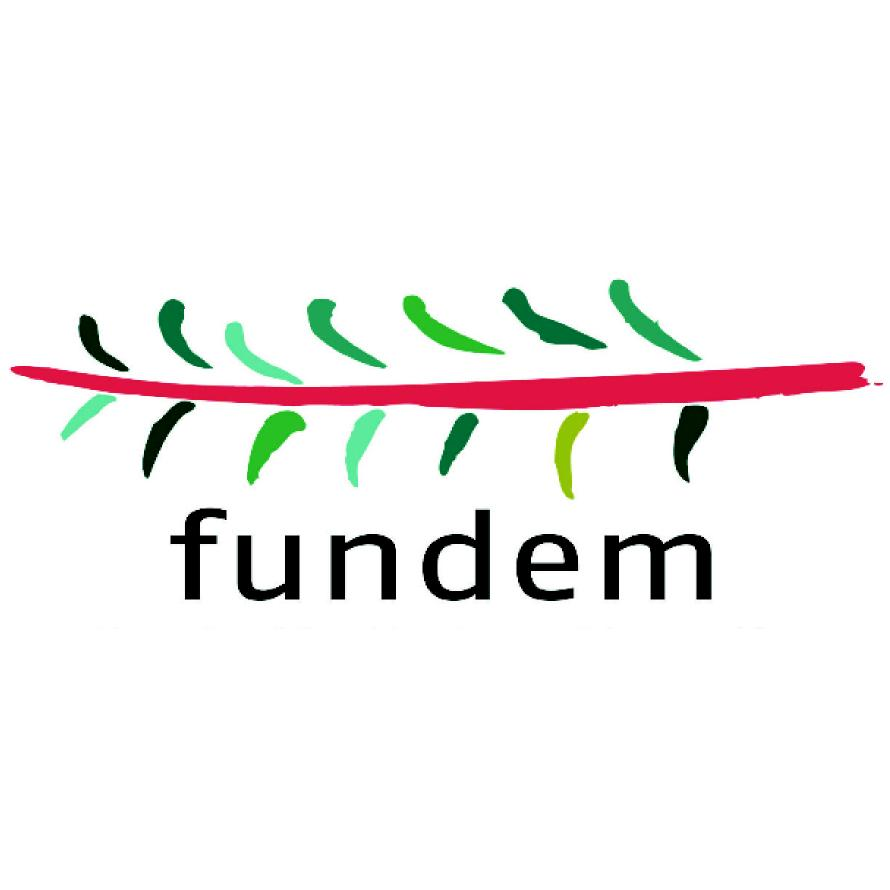 Logo_Fundem